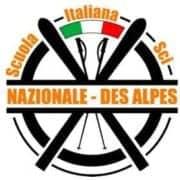Logo Ski School National Des Alpes